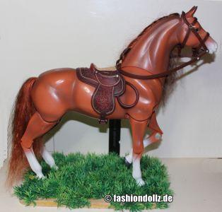 2005 Cali Girl Horse Baja    H2596