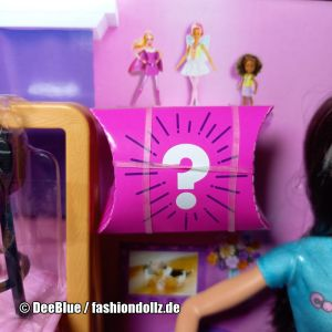2020 Cookie Swirl C Barbie Playset #GLJ38 - Mystery Box (3)