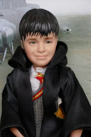 2001 Harry Potter, Soccerers Stone #50685