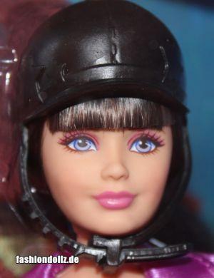 2013 Barbie & Her Sisters in A Pony Tale -      Skipper, Horse Adventure
