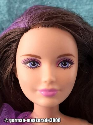 2015 Barbie Sisters' Winter Fun Skipper CMY41