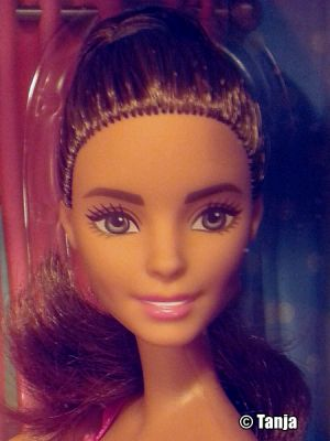2017 Bathroom & Barbie Giftset DVX53